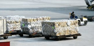 IATA: Air Cargo Bottlenecks Could Put Lives at Risk- Urgent Government Action Required
