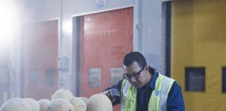 dnata Gains IATA's 'CEIV Fresh' Certification in Singapore
